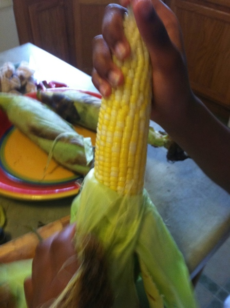Corn from the farm